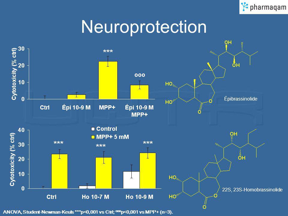 Neuroprotection ANOVA, Student-Newman-Keuls ***p<0,001 vs Ctrl; ooo p<0,001 vs MPP+ (n=3). Épibrassinolide 22S, 23S-Homobrassinolide