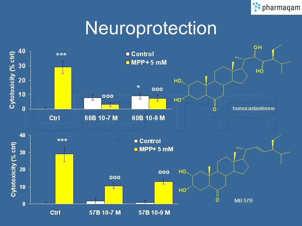 Neuroprotection homocastastérone MB 57B
