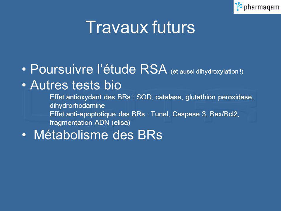 Travaux futurs Poursuivre létude RSA (et aussi dihydroxylation !) Autres tests bio Effet antioxydant des BRs : SOD, catalase, glutathion peroxidase, dihydrorhodamine Effet anti-apoptotique des BRs : Tunel, Caspase 3, Bax/Bcl2, fragmentation ADN (elisa) Métabolisme des BRs