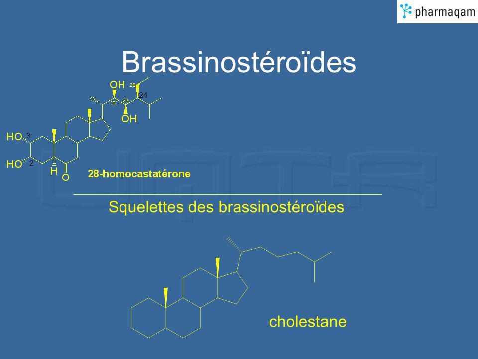 Brassinostéroïdes 2 3 24 Squelettes des brassinostéroïdes cholestane