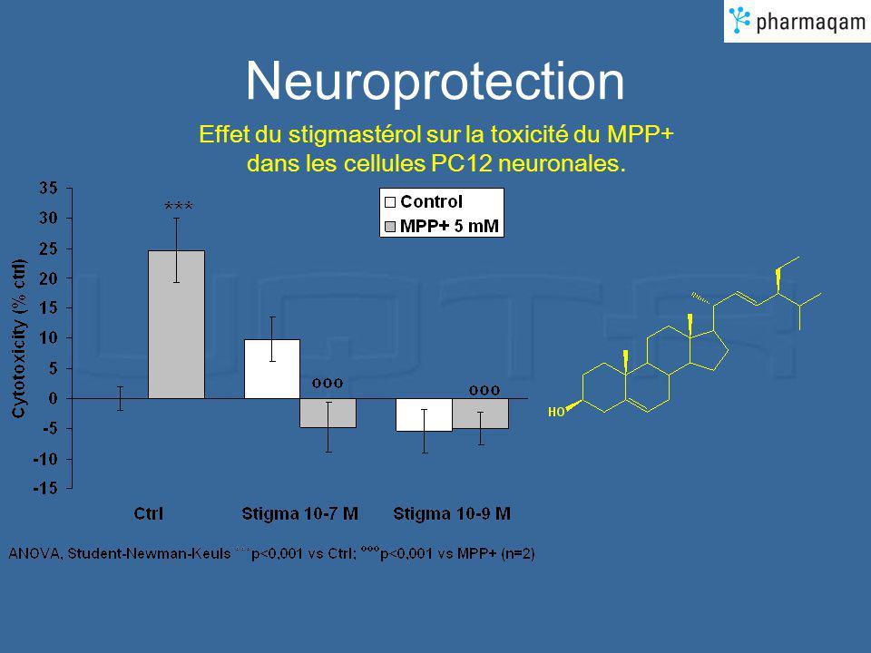 Neuroprotection Effet du stigmastérol sur la toxicité du MPP+ dans les cellules PC12 neuronales.