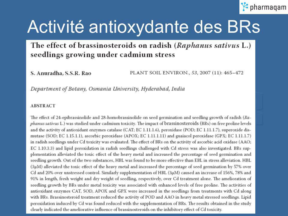 Activité antioxydante des BRs