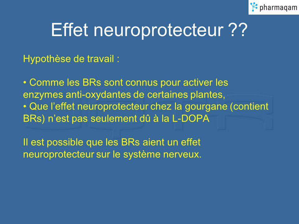 Effet neuroprotecteur ?? Hypothèse de travail : Comme les BRs sont connus pour activer les enzymes anti-oxydantes de certaines plantes, Que leffet neu