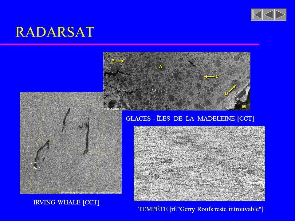 DÉTECTION DE BATEAU [CCT] RADARSAT IRVING WHALE [CCT] TEMPÊTE [rf.