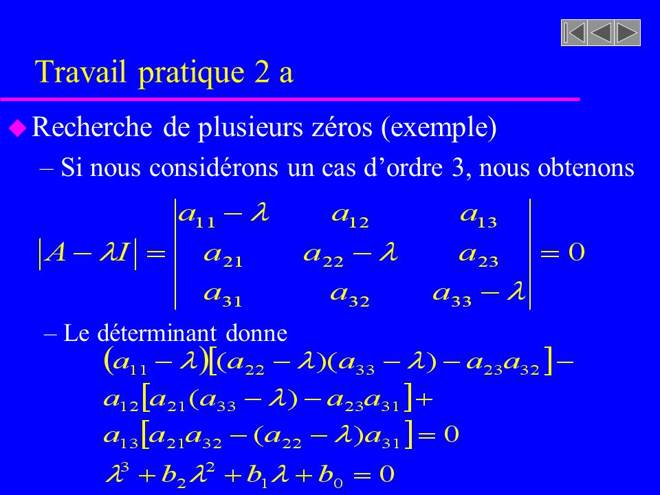 Travail pratique 2 a u Recherche de plusieurs zéros (exemple) –Si nous considérons un cas dordre 3, nous obtenons – Le déterminant donne