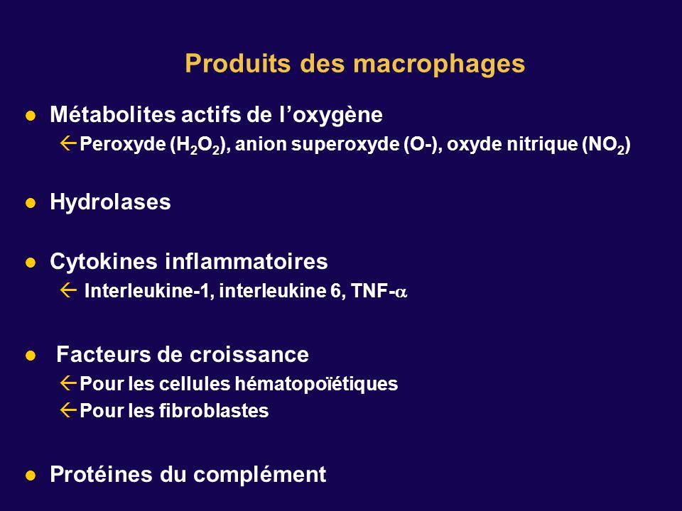 Produits des macrophages Métabolites actifs de loxygène Peroxyde (H 2 O 2 ), anion superoxyde (O-), oxyde nitrique (NO 2 ) Hydrolases Cytokines inflammatoires Interleukine-1, interleukine 6, TNF- Facteurs de croissance Pour les cellules hématopoïétiques Pour les fibroblastes Protéines du complément