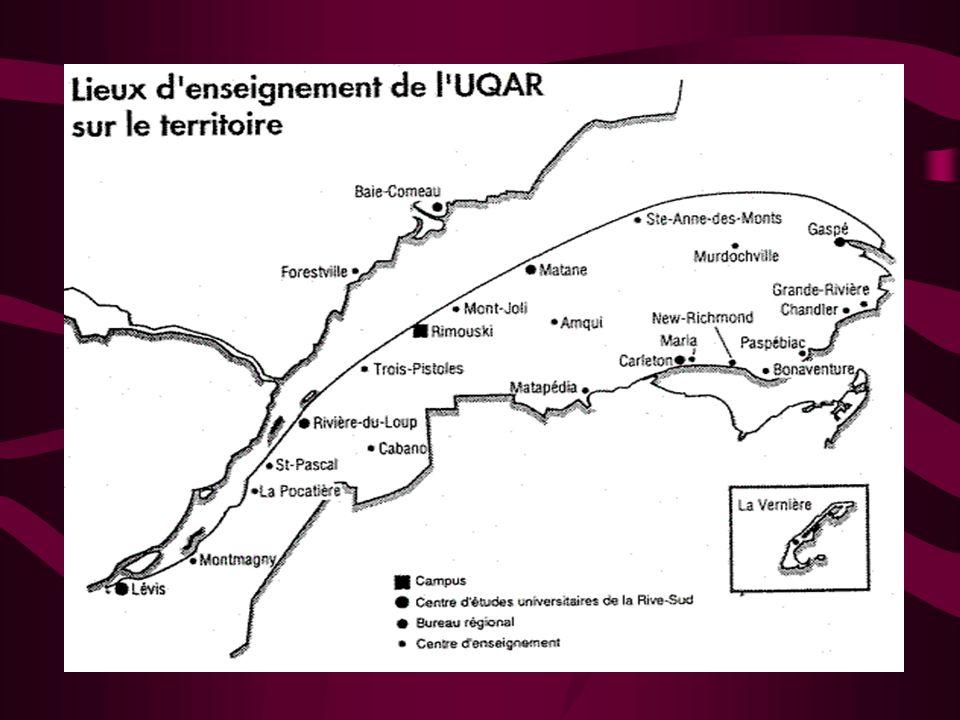 CONSIDÉRATIONS OBJECTIVES Vaste territoire –25% du territoire habité du Québec –6% de la population du Québec Transformation de la clientèle