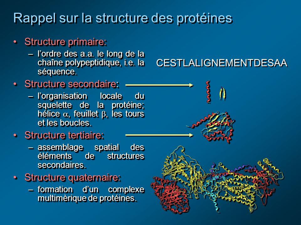 Rappel sur la structure des protéines Structure primaire:Structure primaire: –lordre des a.a.