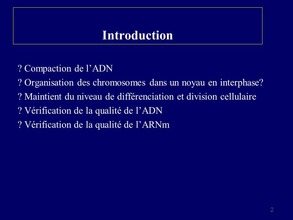 2 Introduction ? Compaction de lADN ? Organisation des chromosomes dans un noyau en interphase? ? Maintient du niveau de différenciation et division c