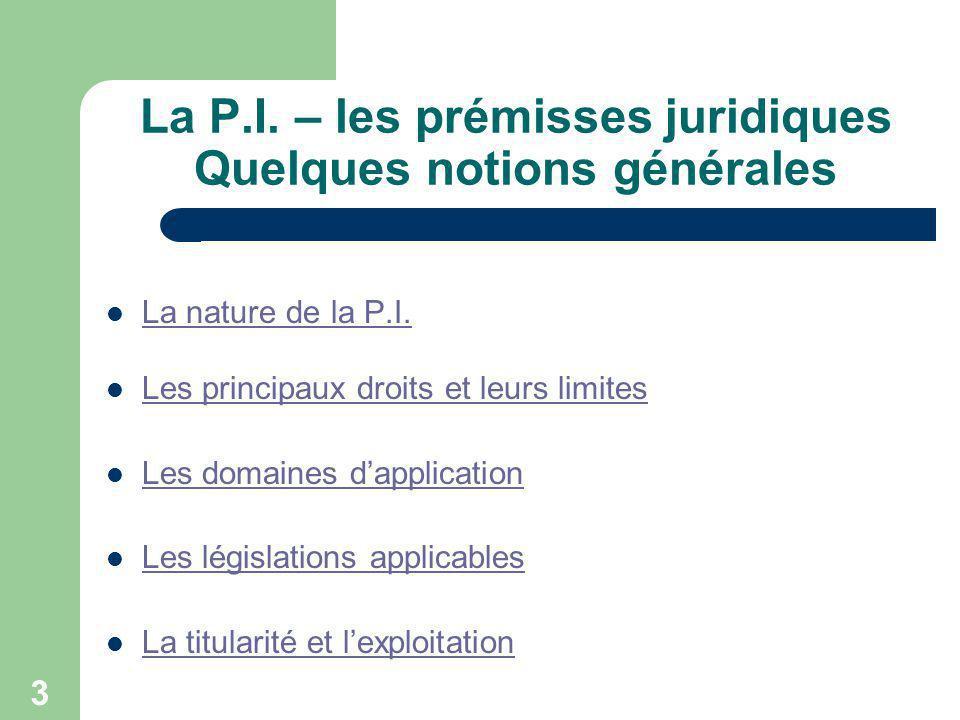 3 La P.I. – les prémisses juridiques Quelques notions générales La nature de la P.I. Les principaux droits et leurs limites Les domaines dapplication