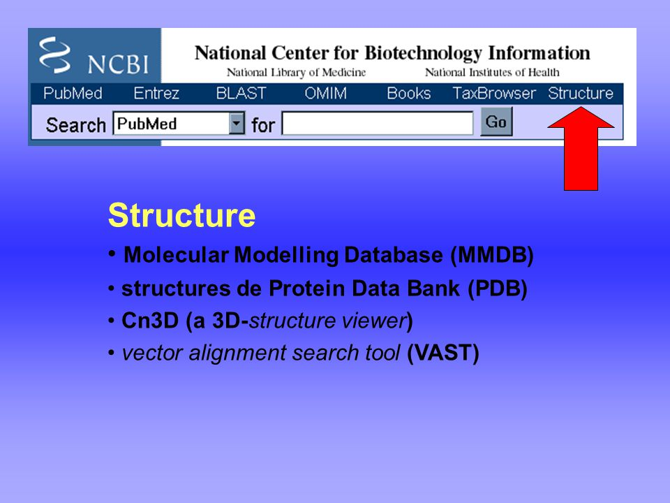 Structure Molecular Modelling Database (MMDB) structures de Protein Data Bank (PDB) Cn3D (a 3D-structure viewer) vector alignment search tool (VAST)