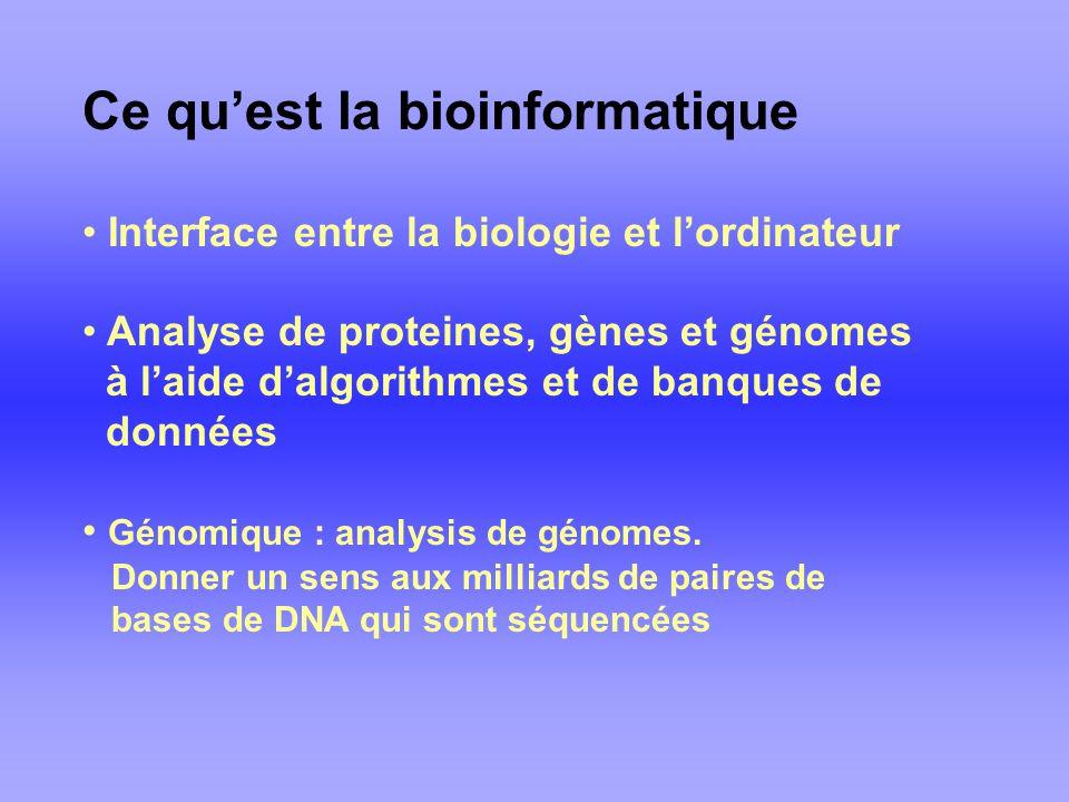 Ce quest la bioinformatique Interface entre la biologie et lordinateur Analyse de proteines, gènes et génomes à laide dalgorithmes et de banques de données Génomique : analysis de génomes.