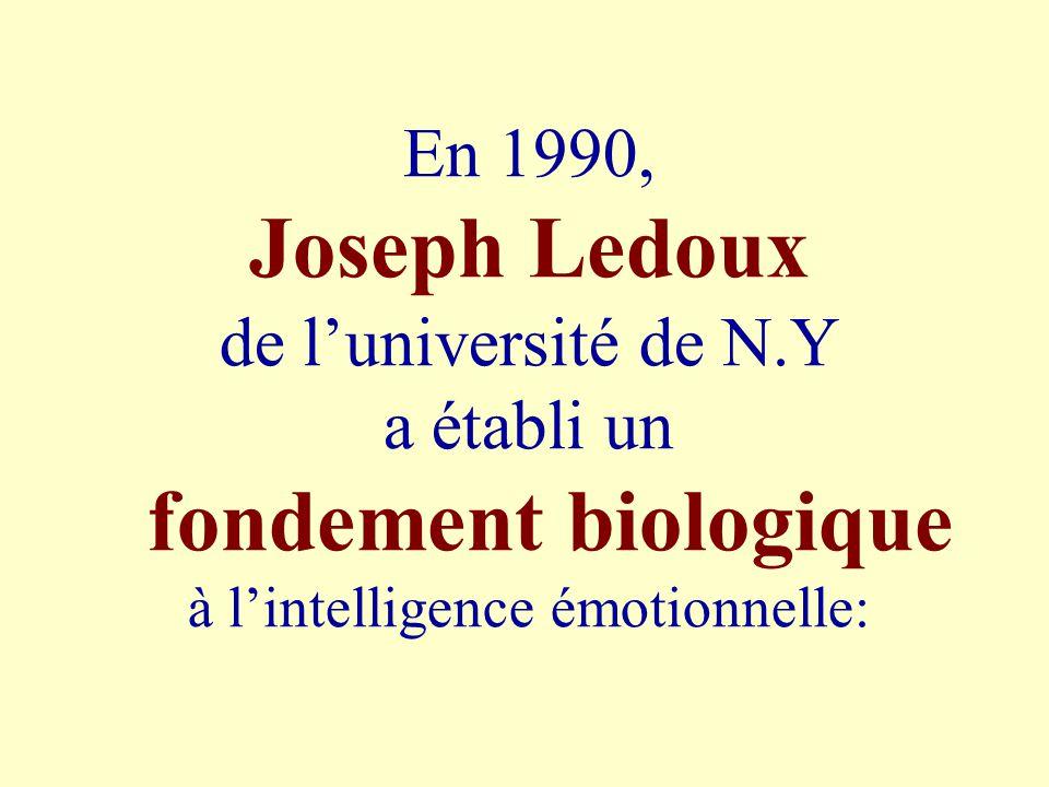 En 1990, Joseph Ledoux de luniversité de N.Y a établi un fondement biologique à lintelligence émotionnelle: