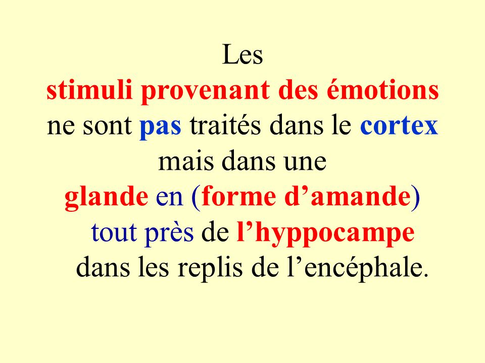 Les stimuli provenant des émotions ne sont pas traités dans le cortex mais dans une glande en (forme damande) tout près de lhyppocampe dans les replis de lencéphale.