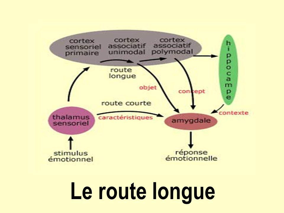 Le route longue
