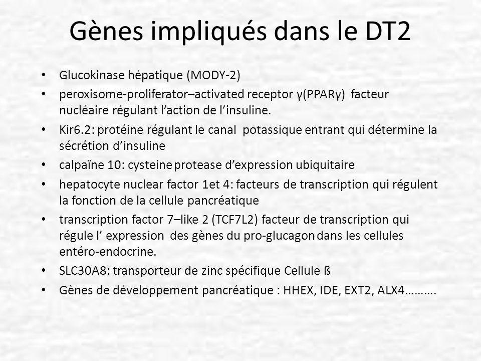 Gènes impliqués dans le DT2 Glucokinase hépatique (MODY-2) peroxisome-proliferator–activated receptor γ(PPARγ) facteur nucléaire régulant laction de l