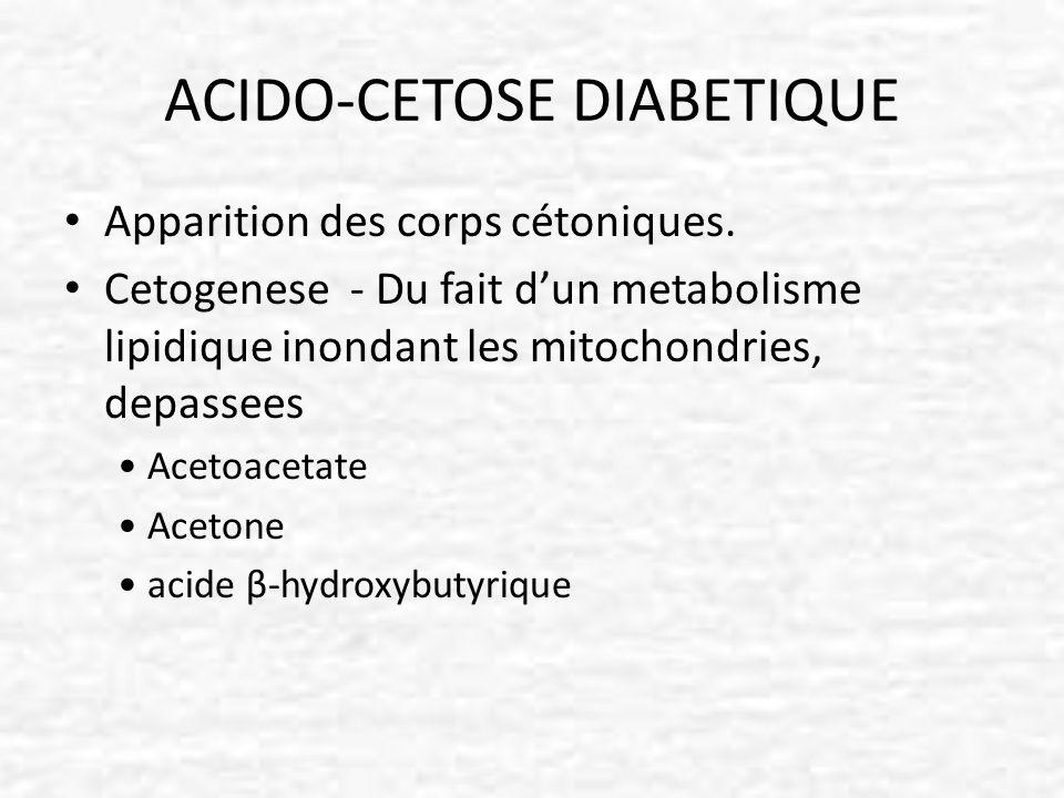 ACIDO-CETOSE DIABETIQUE Apparition des corps cétoniques. Cetogenese - Du fait dun metabolisme lipidique inondant les mitochondries, depassees Acetoace