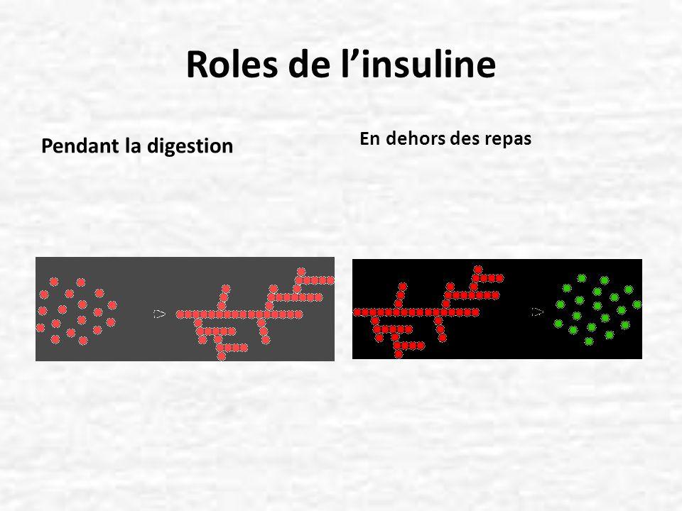 Insuline et lipoprotéines : des liens étroits Linsuline intervient a differents niveaux pour reguler le metabolisme lipidique : Tissu adipeux : favorise le stockage des TG en réduisant la relargage des acides gras libres Foie : inhibe la production des VLDL Favorise le catabolisme des Lp riches en TG (augmente lactivité et la synthèse de la lipoprotéine-lipase) Favorise le catabolisme des LDL