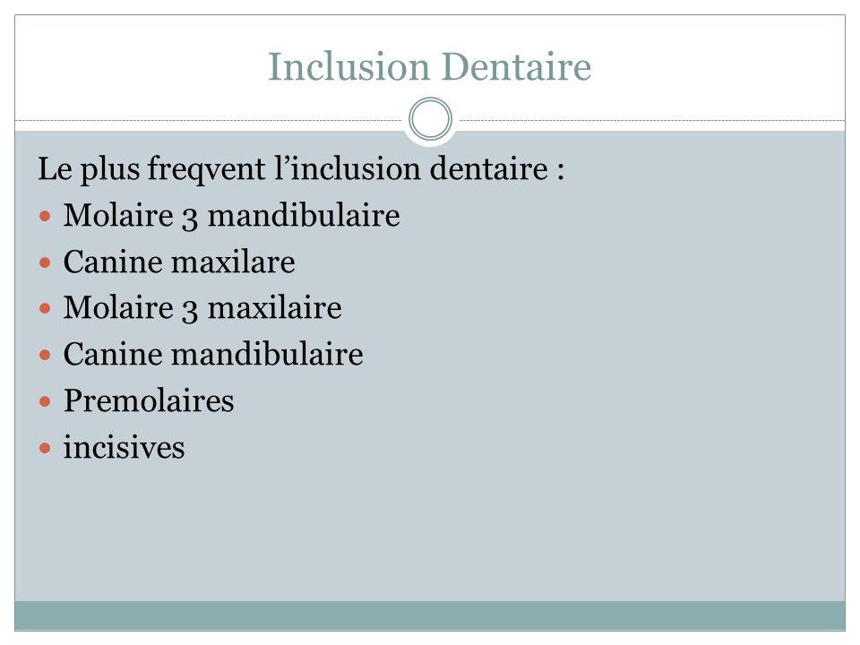 Inclusion Dentaire Le plus freqvent linclusion dentaire : Molaire 3 mandibulaire Canine maxilare Molaire 3 maxilaire Canine mandibulaire Premolaires i