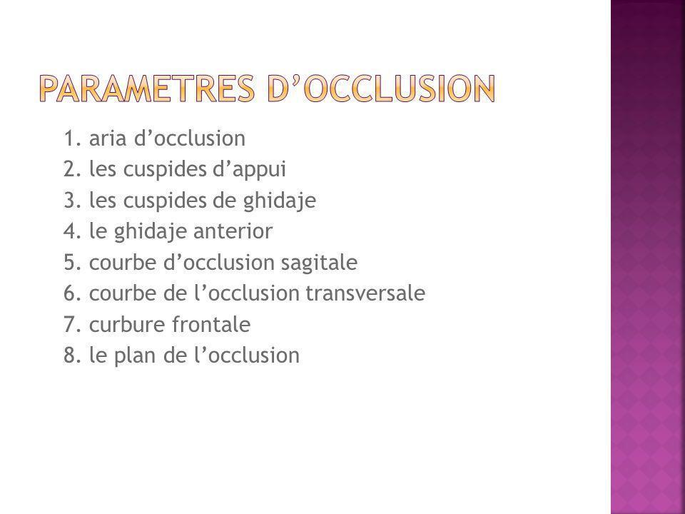 1. aria docclusion 2. les cuspides dappui 3. les cuspides de ghidaje 4.