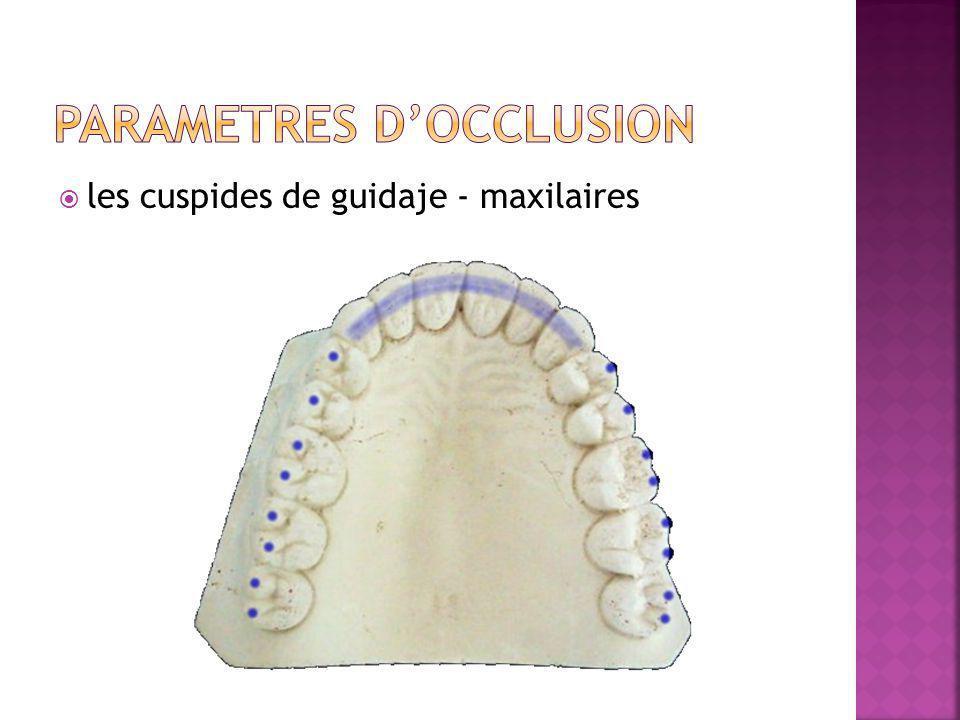 les cuspides de guidaje - maxilaires