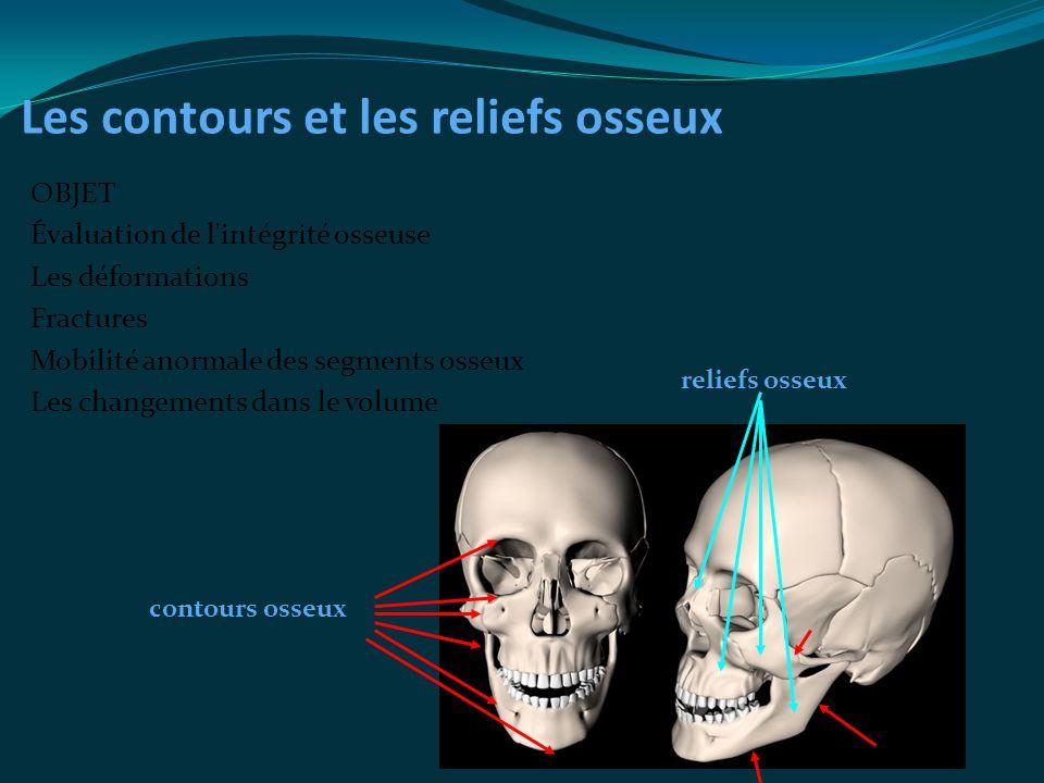 Les contours et les reliefs osseux OBJET Évaluation de l'intégrité osseuse Les déformations Fractures Mobilité anormale des segments osseux Les change