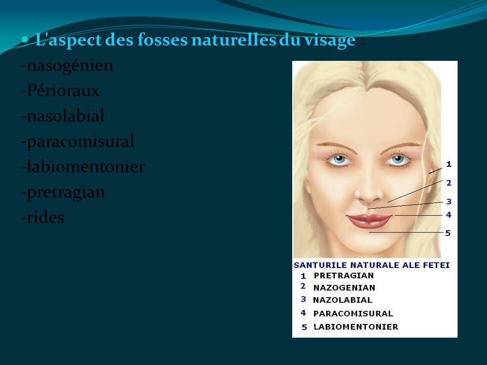 L'aspect des fosses naturelles du visage : -nasogénien -Périoraux -nasolabial -paracomisural -labiomentonier -pretragian -rides