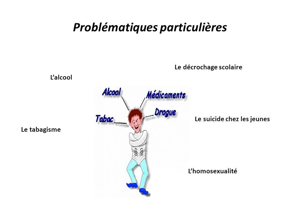 Portrait de la jeunesse québécoise La fréquentation scolaire L obtention d un diplôme L accès aux études