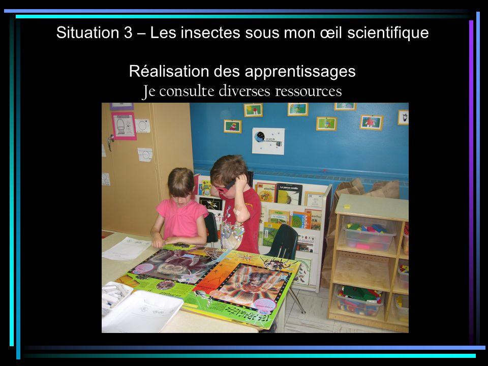 Situation 3 – Les insectes sous mon œil scientifique Réalisation des apprentissages Je consulte diverses ressources