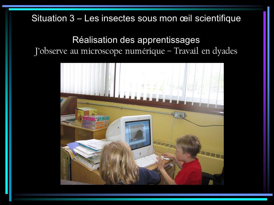 Situation 3 – Les insectes sous mon œil scientifique Réalisation des apprentissages Jobserve au microscope numérique – Travail en dyades