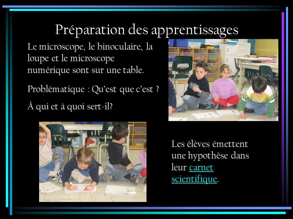 Réalisation des apprentissages Une brève présentation de chacun des instruments.