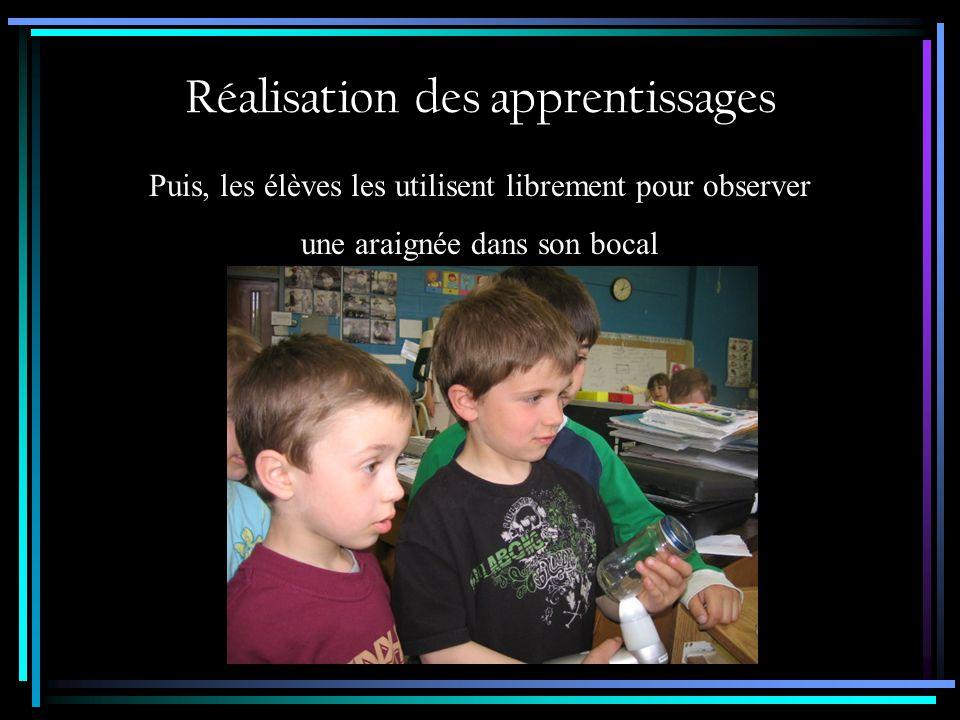 Réalisation des apprentissages Puis, les élèves les utilisent librement pour observer ???