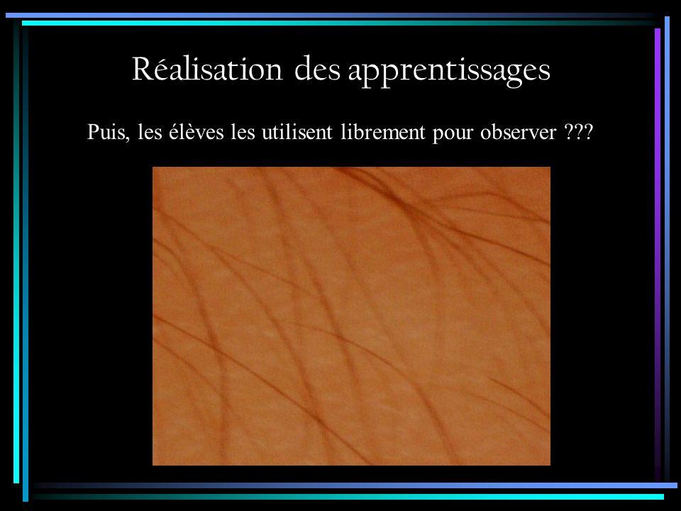 Situation 2 - Corde à linge pour lilliputiens Préparation des apprentissages Observation au microscope numérique dun tissu porté par lenfant et prise dimages.