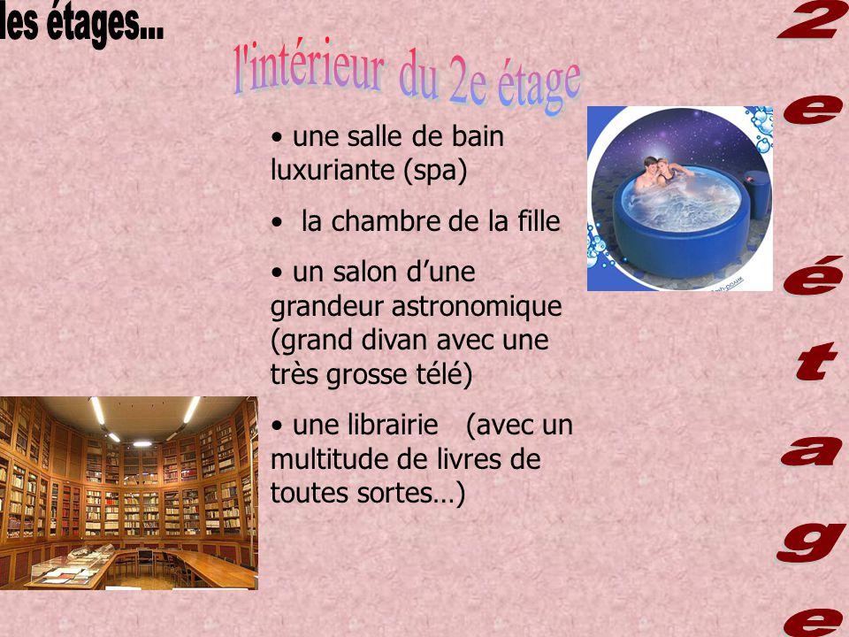 une salle de bain luxuriante (spa) la chambre de la fille un salon dune grandeur astronomique (grand divan avec une très grosse télé) une librairie (avec un multitude de livres de toutes sortes…)