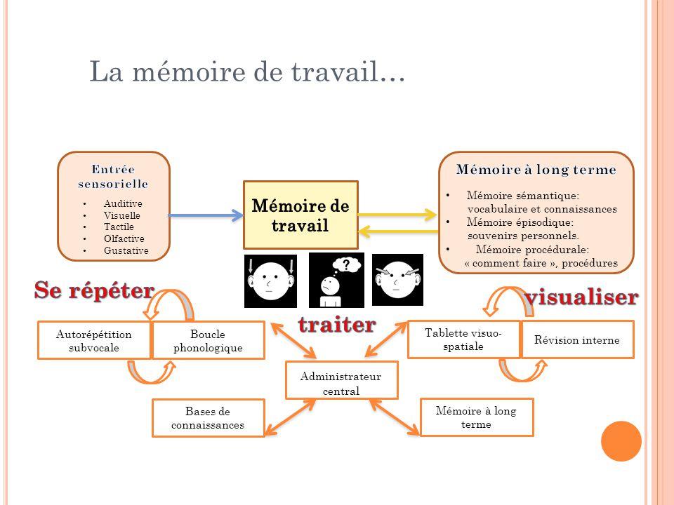 La mémoire de travail… Auditive Visuelle Tactile Olfactive Gustative Mémoire sémantique: vocabulaire et connaissances Mémoire épisodique: souvenirs pe