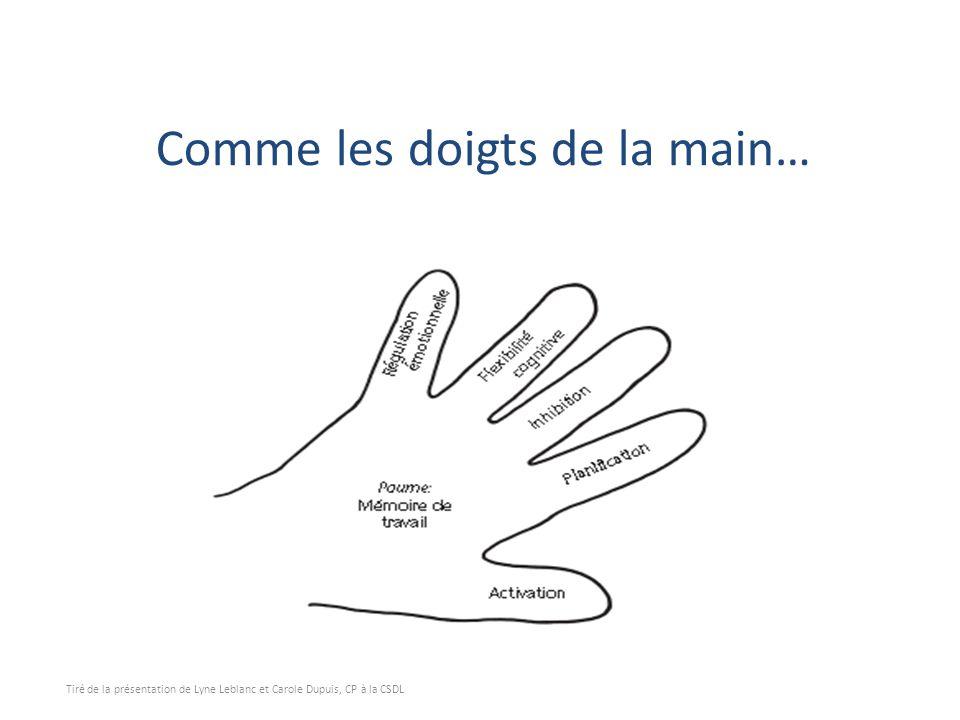 Comme les doigts de la main… Tiré de la présentation de Lyne Leblanc et Carole Dupuis, CP à la CSDL