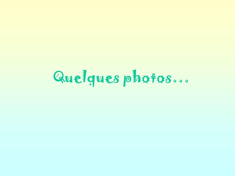 Quelques photos…