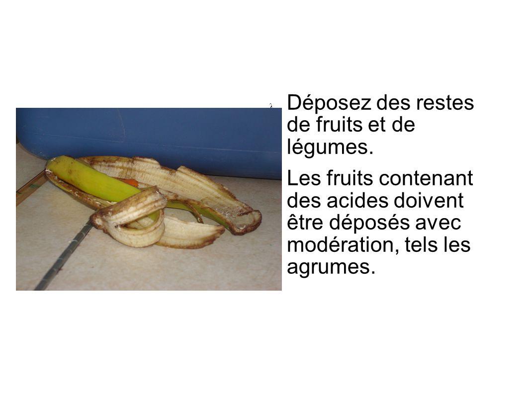 Déposez des restes de fruits et de légumes. Les fruits contenant des acides doivent être déposés avec modération, tels les agrumes.