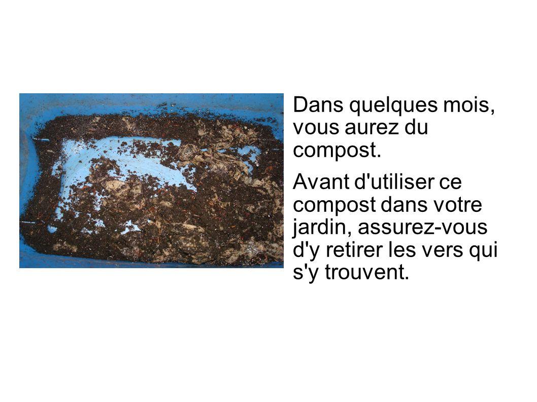 Dans quelques mois, vous aurez du compost. Avant d'utiliser ce compost dans votre jardin, assurez-vous d'y retirer les vers qui s'y trouvent.