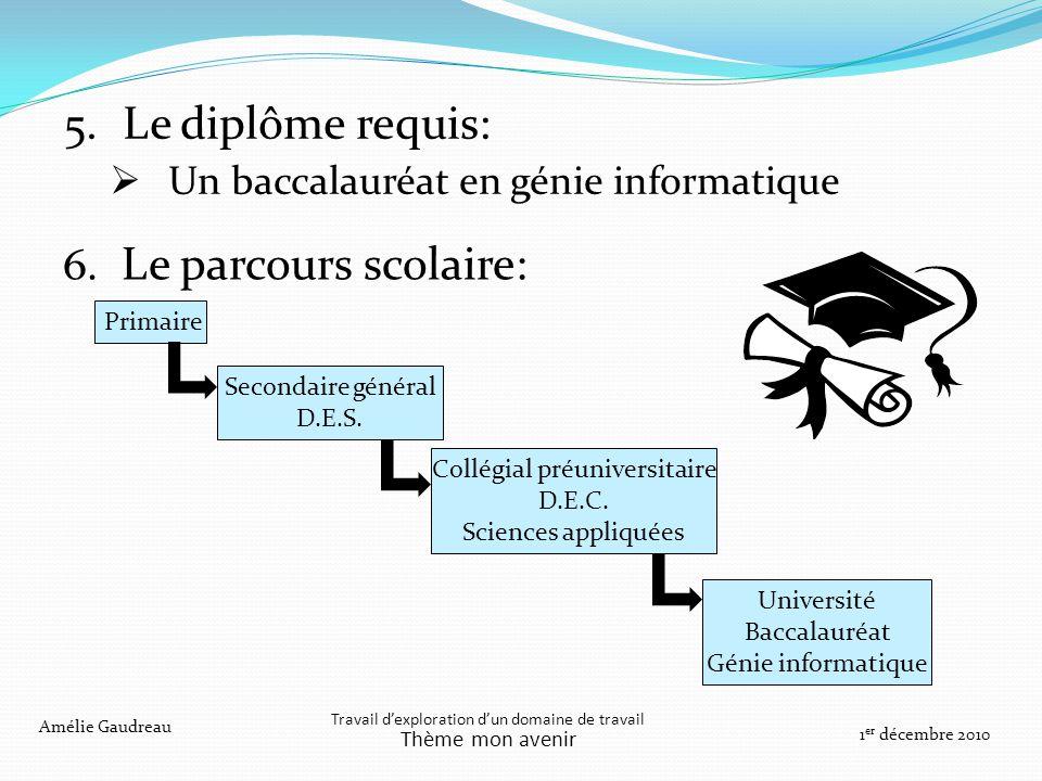 6. Le parcours scolaire: Travail dexploration dun domaine de travail Thème mon avenir Amélie Gaudreau 1 er décembre 2010 Primaire Université Baccalaur