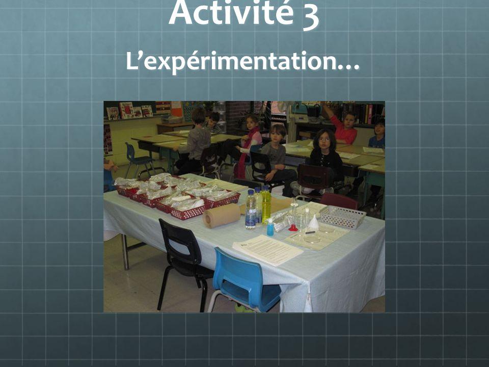 Activité 3 Lexpérimentation…