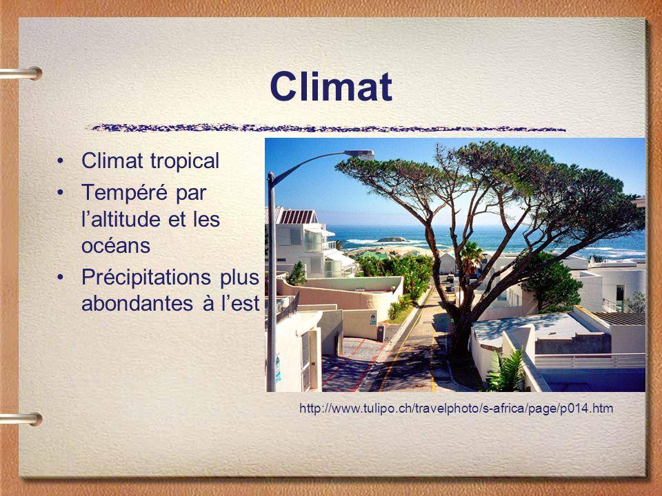 Climat Climat tropical Tempéré par laltitude et les océans Précipitations plus abondantes à lest http://www.tulipo.ch/travelphoto/s-africa/page/p014.htm