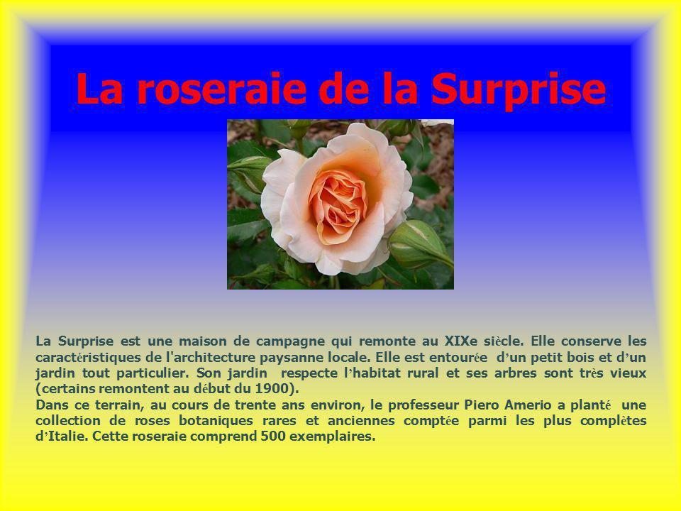 La roseraie de la Surprise La Surprise est une maison de campagne qui remonte au XIXe si è cle. Elle conserve les caract é ristiques de l'architecture