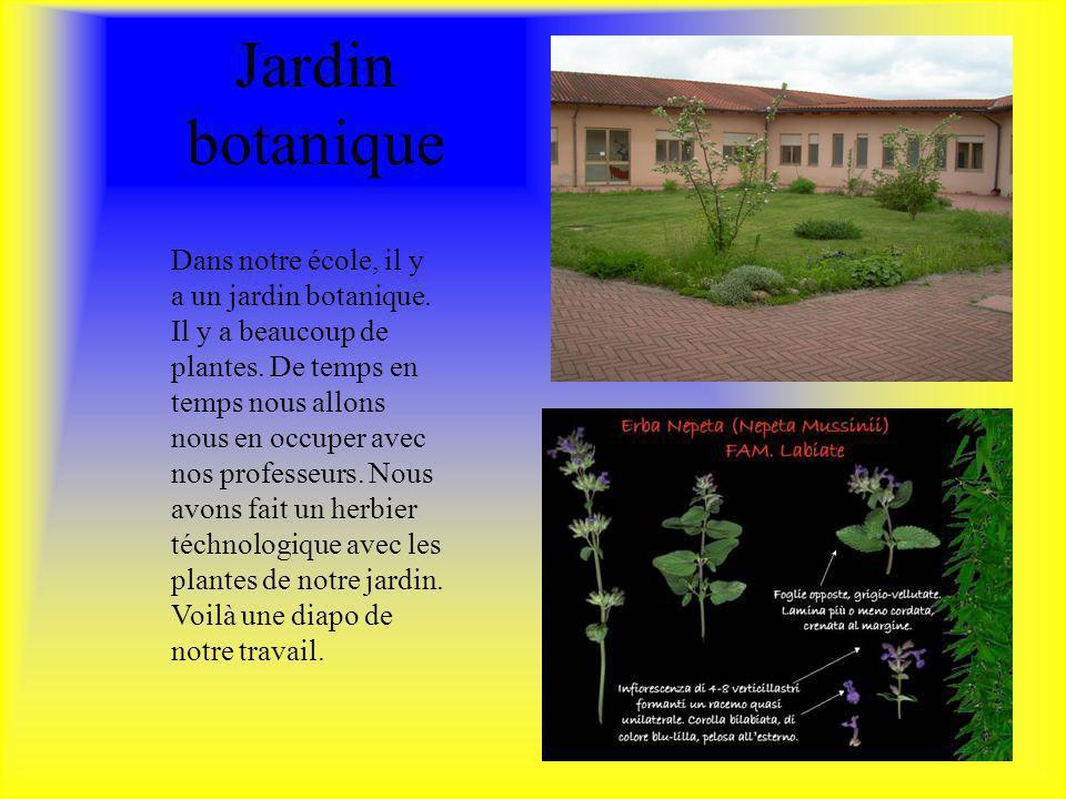Jardin botanique Dans notre école, il y a un jardin botanique. Il y a beaucoup de plantes. De temps en temps nous allons nous en occuper avec nos prof