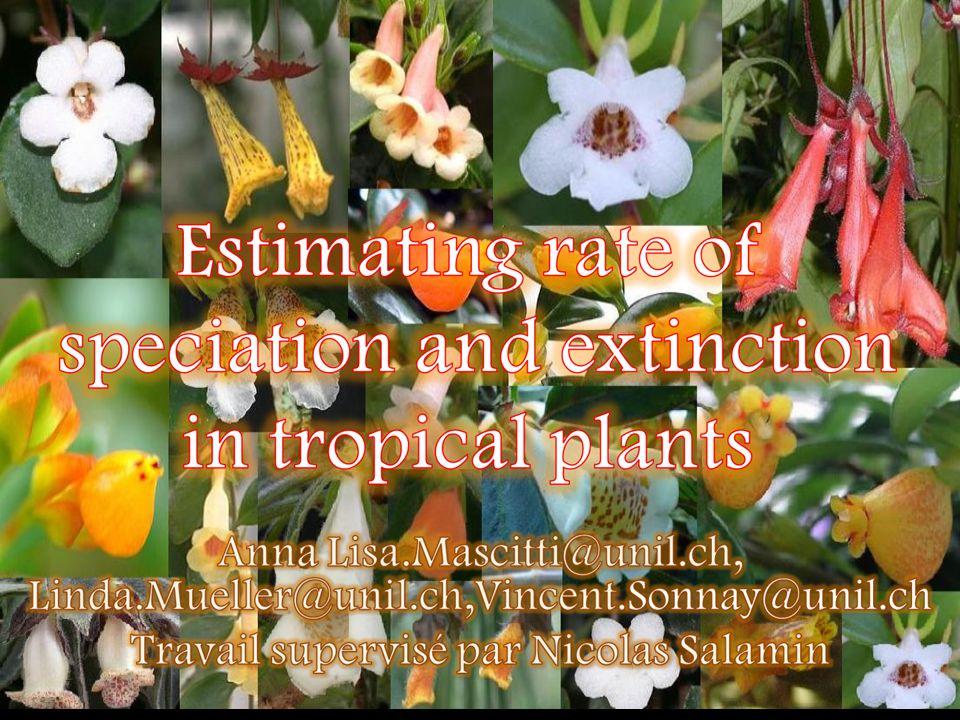 Aspect biologique: Nous avons constaté que le type de pollinisateurs ninfluence pas les taux de spéciation et dextinction dans le cas étudié.