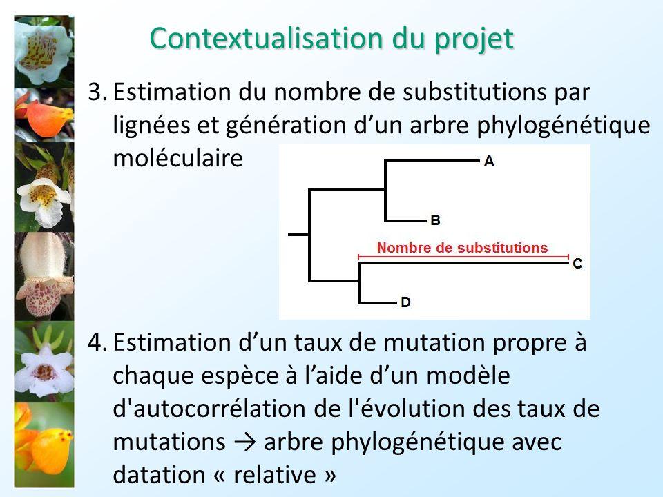 5.Utilisation dun fossile dâge connu et assimilé à nos espèces dintérêts comme référence temporelle arbre phylogénétique avec datation « absolue » Attention: ces différentes étapes utilisent des modèles et comportent des approximations les résultats obtenus sont des estimations Contextualisation du projet