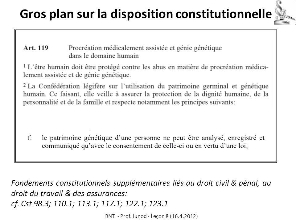 Gros plan sur la disposition constitutionnelle Fondements constitutionnels supplémentaires liés au droit civil & pénal, au droit du travail & des assu