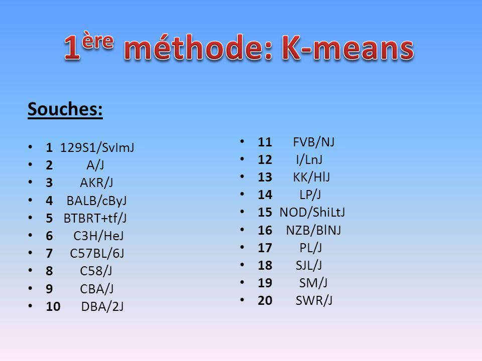 Souches: 1 129S1/SvImJ 2 A/J 3 AKR/J 4 BALB/cByJ 5 BTBRT+tf/J 6 C3H/HeJ 7 C57BL/6J 8 C58/J 9 CBA/J 10 DBA/2J 11 FVB/NJ 12 I/LnJ 13 KK/HlJ 14 LP/J 15 N