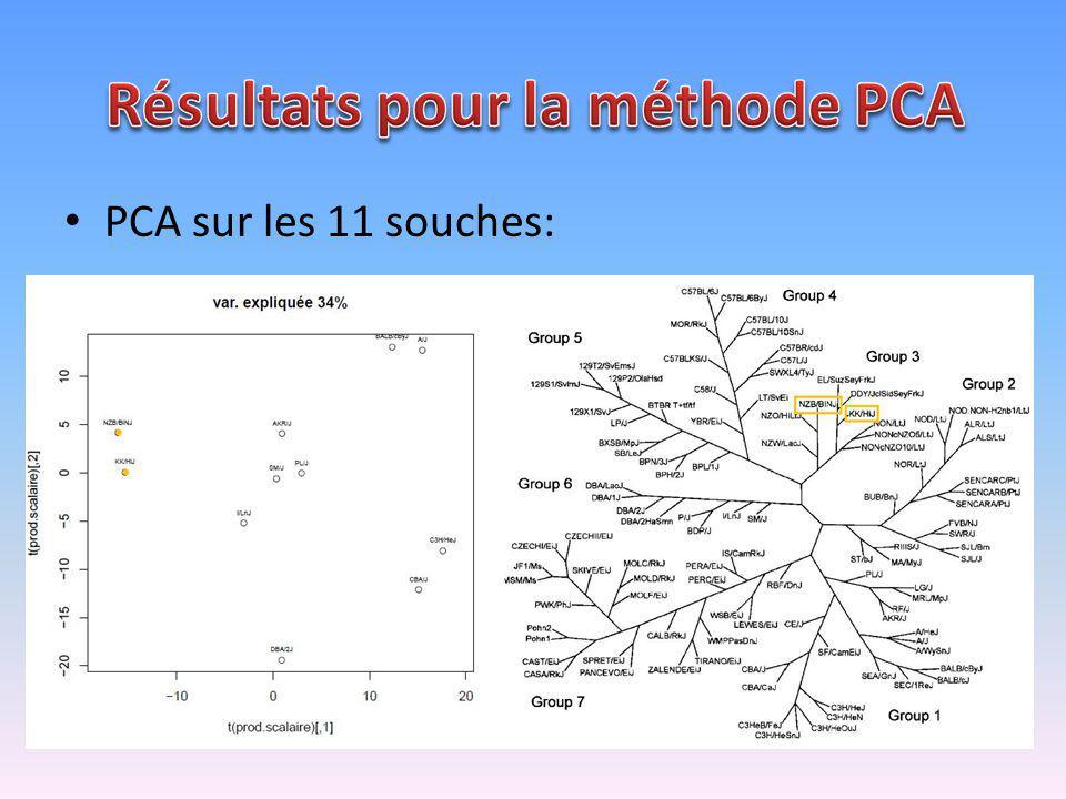 PCA sur les 11 souches: