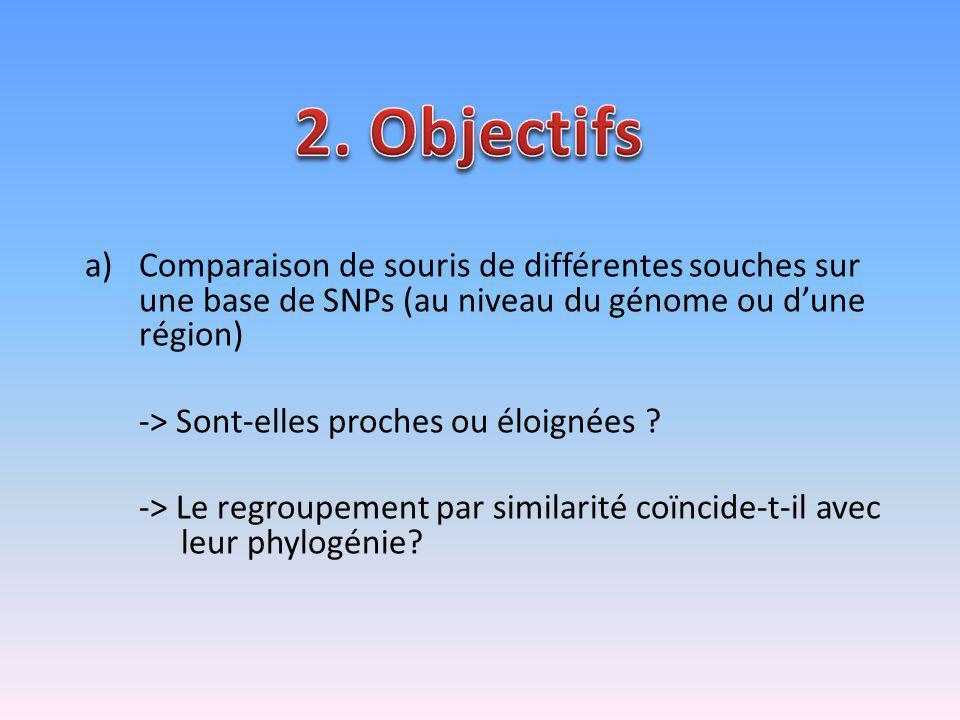 a)Comparaison de souris de différentes souches sur une base de SNPs (au niveau du génome ou dune région) -> Sont-elles proches ou éloignées ? -> Le re